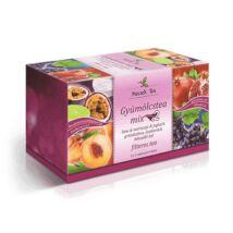MECSEK Gyümölcstea-Mix2 20 filter