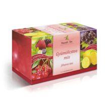 MECSEK Gyümölcstea-Mix 20 filter